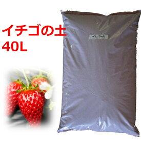【送料無料】 イチゴの苗づくり専用培養土 40L 土 いちご 苗 育苗 ポット