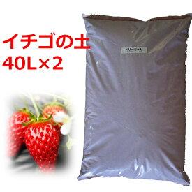 【送料無料】 イチゴの苗づくり専用培養土 40L 2袋セット 土 いちご 苗 育苗 ポット