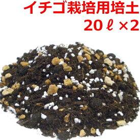 【送料無料】 イチゴ栽培用培養土 20L 2袋セット 土