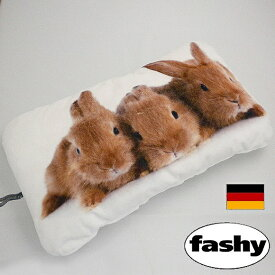 ファシー(FASHY)湯たんぽ ドイツ製 ラビットの湯たんぽ 0.8リットル (SSa043) [湯たんぽ fashy ゆたんぽ かわいい 可愛い おしゃれ キッズ 子供 こども 停電 省エネ 健康 安眠 グッズ] 【 送料無料 】