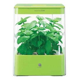 水耕栽培 led キット 水耕栽培器 ユーイング UH-CB01G1(G) グリーン GreenFarm CUBE(グリーンファーム キューブ) 家庭菜園 自然 彩り 野菜 植物 栽培 収穫 コンパクト おしゃれ インテリア タイマー