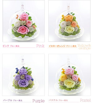 https://image.rakuten.co.jp/a4s/cabinet/hikaru/hikaru/imgrc0079076242.jpg
