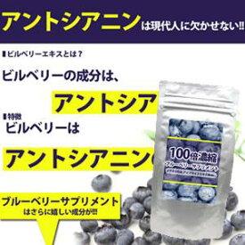 【100倍濃縮ブルーベリーサプリメント 60粒】