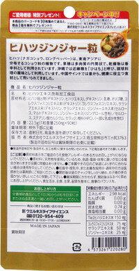 【訳あり在庫処分】【メール便送料無料】ヒハツジンジャー粒90粒