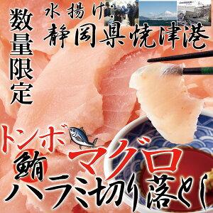 静岡県焼津港で水揚げされた本場のマグロ!!【訳あり】トンボマグロハラミ切り落とし500g[A冷凍]【直送品の為、代引決済・冷凍便商品以外との同梱不可】