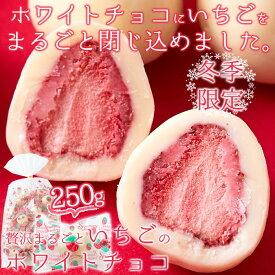 酸味と甘味が絶妙なコラボレーション!!夢の大人買い★贅沢まるごといちごのホワイトチョコどっさり250g
