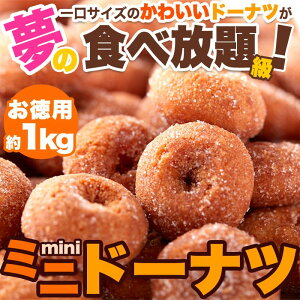 【ネット販売限定商品】みんな大好き!一口サイズのドーナツが夢の食べ放題級!!ミニドーナツ1kg(250g×4袋)