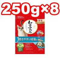 新日清ペットフードJP-CAT和の究み1歳から飽きやすい成猫用かつお味チキン味2kg(250g×8袋)(キャットフード/ペットフード/猫/ネコ/国産)