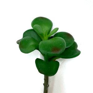 多肉植物 フェイクグリーン  a214-18