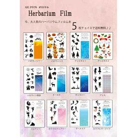 ハーバリウムフィルム 5枚チョイスセット 【メール便送料無料】