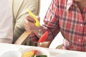 形状記憶ポリマーWiLL1(ウィル・ワン)スプーン・フォーク 障害児用食器/介護用食器/高齢者・障害者用食器