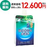 【送料無料】【代引き手数料無料】熊本県菊池の天然水使用「浸みわたる水素水」(500ml×30本)