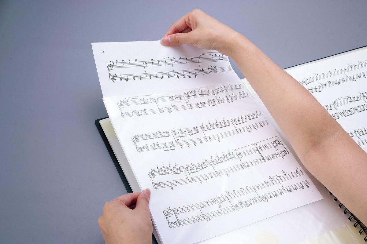 【取寄品】BF3615−01 バンドファイル オーケストラ用【送料無料】【smtb-u】[音符クリッププレゼント]