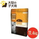 【送料無料】【リニューアル】アカナ パピーラージブリード(11.4kg)大型犬/小犬用(賞味期限2017.7.4)