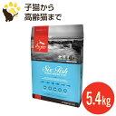 オリジン 6フィッシュ キャット 5.45kg (正規品) 全年齢 全猫種用 キャットフード 賞味期限2020.9.24