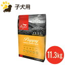 【新登場】(NEW)オリジン パピー(11.3kg)(幼犬用)【穀物不使用】【総合栄養食】(賞味期限2018.7.6)
