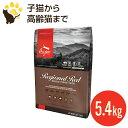 オリジン レジオナルレッド キャット 5.45kg (正規品) 全年齢用 キャットフード 賞味期限2021.8.20