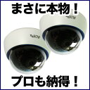 防犯カメラ ダミーカメラ ダミー 監視カメラ 2台セット 【本物と間違えるダミーカメラ】DAM001-2