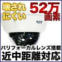 防犯カメラ 監視カメラ 耐衝撃 52万画素カラー 赤外線LED内蔵屋外カメラ TVD65W21T-24N