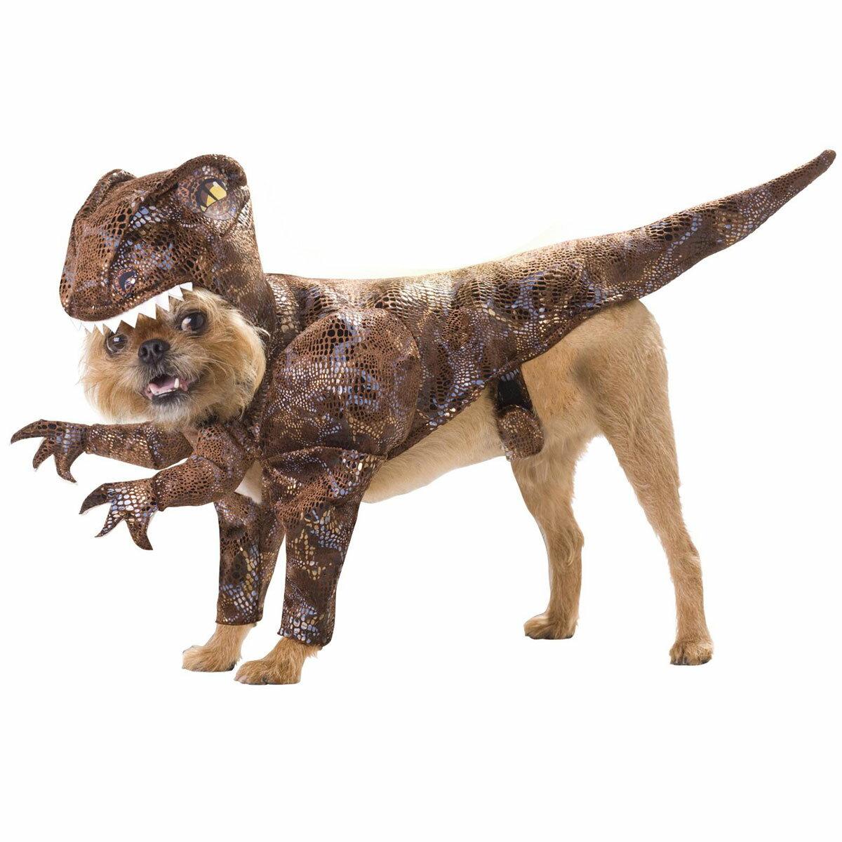 なりきり 犬服 コスプレ 衣装 アニマルプラネット 恐竜ラプトル 年賀状 戌年
