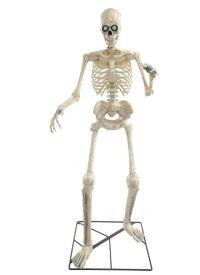 ハロウィン 飾り 182cm 等身大 スケルトン 骸骨 頭 目玉が動く しゃべる アニマトロニクス がいこつ