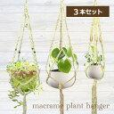 【3本セット】マクラメ プラントハンガー ハンギングプランター 観葉植物 鉢 吊り下げ ロープ3本セット