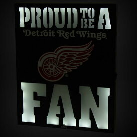 Detroit Red Wings 12 x 15 LED Metal Wall Decor ユニセックス