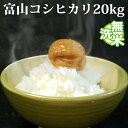 無洗米 20kg 送料無料 コシヒカリ 5kg×4袋 富山県産 令和元年産 1等米 コシヒカリ お米 20キロ 安い 送料無料 沖縄配送不可
