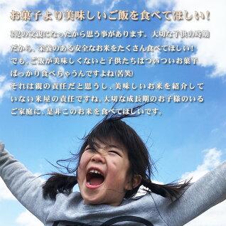 米白米10kg送料無料コシヒカリ5kg×2袋愛知県産令和元年産コシヒカリお米10キロ安いあす楽北海道・沖縄は追加送料