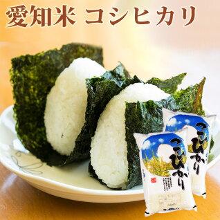 愛知県白米こしひかり10kg