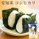 米 白米 5kg コシヒカリ 愛知県産 令和元年産 コシヒカリ お米 5キロ 安い あす楽 送料別