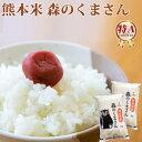 【10%以上OFF】 楽天スーパーSALE 新米 米 10kg 森のくまさん 熊本県産 令和元年産 白米 5kg×2袋 くまモン お米 送料…
