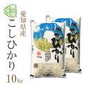 新米 米 無洗米 10kg 送料無料 コシヒカリ 5kg×2袋 愛知県産 令和2年産 コシヒカリ お米 10キロ 安い あす楽 送料無…