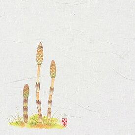 【8/5限定エントリーでP14倍!】ニュー四季懐紙 5寸 (100枚入) NS-5 つくし(2月〜4月) 150×150mm