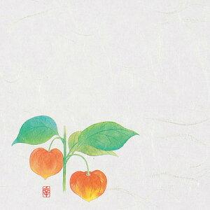 ニュー四季懐紙 5寸 (100枚入) NS-8 ほおずき(7月〜8月) 150×150mm【 アドキッチン 】