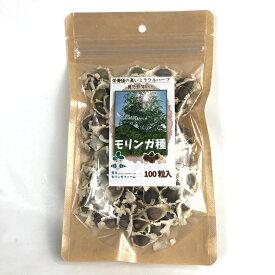 【天草モリンガ】モリンガシード モリンガの種100粒 天然ハーブMORINNGA 植えてもOK食べてもOK 推奨発芽温度20度(栄養価の高いミラクルハーブ)