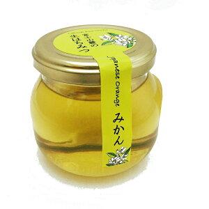 木の花ファミリー 富士山麓の生はちみつ みかん 100g【国産 非加熱 ローハニー】