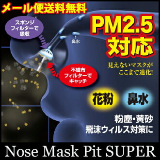 Nasal mask buzz! Pollen anti ★ nose mask pit II pollen anti economical 14 pieces set [genuine]! More than 3 courier! SALE! sale
