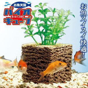 水槽 水質 浄化 水質浄化 金魚鉢 水きれい バクテリア 濾過 濾過フィルター バイオキューブ お魚天国バイオキューブ