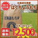 【送料無料】名寄市風連町★令和2年度★はくちょうもち30kg/玄米