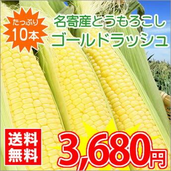 【送料無料】北海道名寄産とうもろこし★ゴールドラッシュ(5kg前後入・10〜12本入) ※収穫後随時お届けとなります。