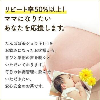 【ポイント5倍!】たんぽぽ茶ショウキT-1プラス(plus)100ml×5包