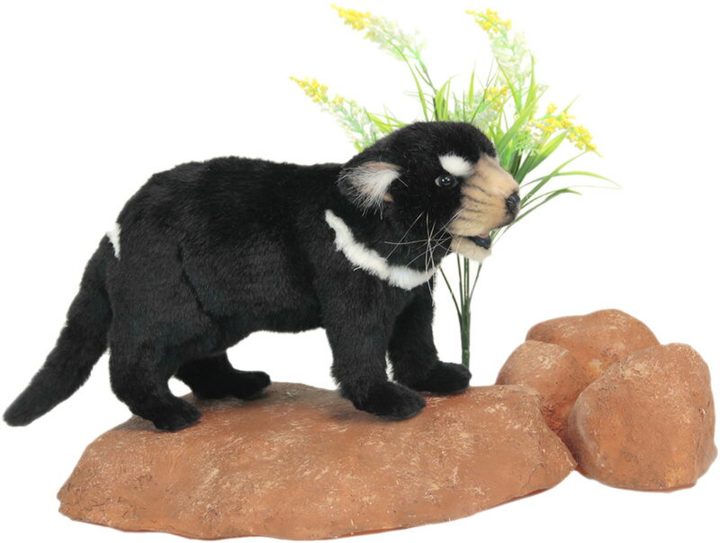 HANSA 4722 タスマニアデビル33 全長:33cm TASMANIANDEV BH4722 ぬいぐるみ ハンサ タスマニアンデビル クリスマス 誕生日 プレゼント 動物 犬 猫 鳥 うさぎ ペンギン アニマル 置物 人形 フィギュア KOESEN ケーセン カロラータ 大きい マスコット 実物大 大型
