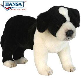 HANSA 5663 ボーダーコリー(コ)39 全長:39cm BORDER COL BH5663 ぬいぐるみ ハンサ クリスマス 誕生日 プレゼント 動物 犬 猫 鳥 うさぎ ペンギン アニマル 置物 人形 フィギュア KOESEN ケーセン カロラータ 大きい マスコット 実物大 大型