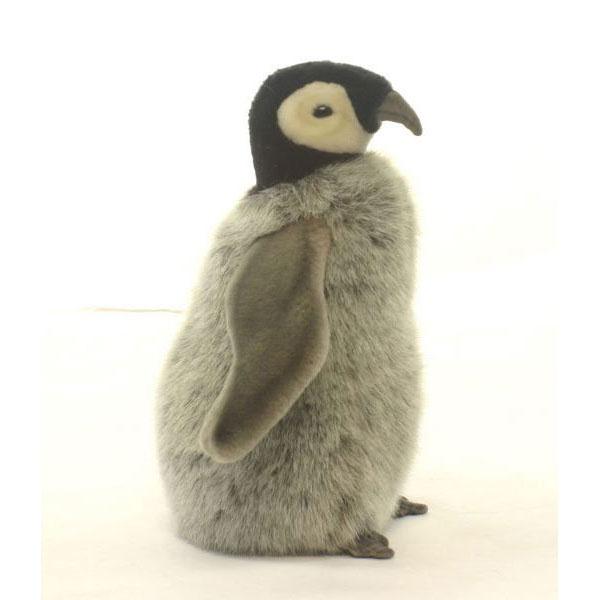 HANSA 赤ちゃん皇帝ペンギン24 H24(cm) 4668 ぬいぐるみ ハンサ クリスマス 誕生日 プレゼント 動物 犬 猫 鳥 うさぎ ペンギン アニマル 置物 人形 フィギュア KOESEN ケーセン カロラータ 大きい マスコット 実物大 大型