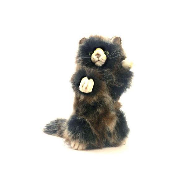 HANSA 子ネコ25 H25(cm) 5022 ぬいぐるみ ハンサ 子猫 クリスマス 誕生日 プレゼント 動物 犬 猫 鳥 うさぎ ペンギン アニマル 置物 人形 フィギュア KOESEN ケーセン カロラータ 大きい マスコット 実物大 大型