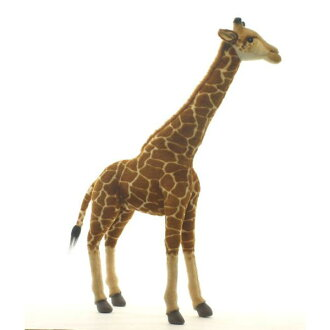 Cute giraffe HANSA 70 H 70 cm 5256, real! In the worldwide popular stuffed animals Hansa Christmas gift gift birthday gift giveaway Valentine white anniversary gifts! Fashionable Homewares