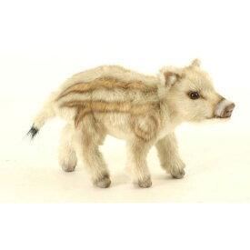 HANSA 赤ちゃんイノシシ28 L28(cm) 5341 ぬいぐるみ ハンサ 猪 クリスマス 誕生日 プレゼント 動物 犬 猫 鳥 うさぎ ペンギン アニマル 置物 人形 フィギュア KOESEN ケーセン カロラータ 大きい マスコット 実物大 大型