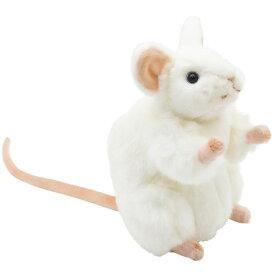 ネズミ 縁起 白 中国の縁起物 【縁起の良い物・縁起の悪い物】