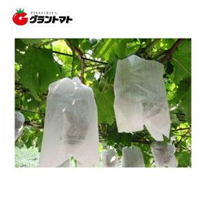 Sブドウ袋 3号 173×250 100枚入り ぶどう栽培用 果実袋 柴田屋加工紙